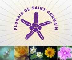 florais_fsg